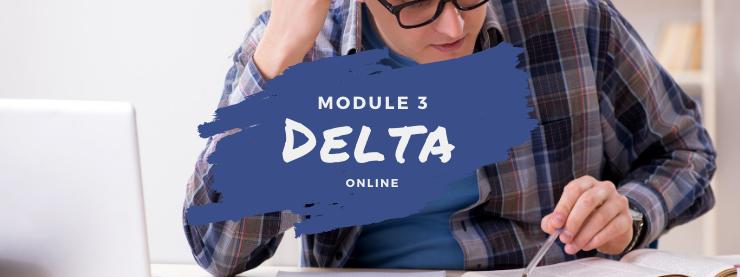 TEFL Online Course Delta Module Three