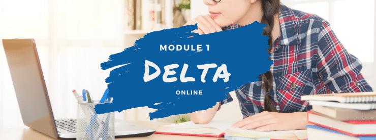TEFL Online Course Delta Module One