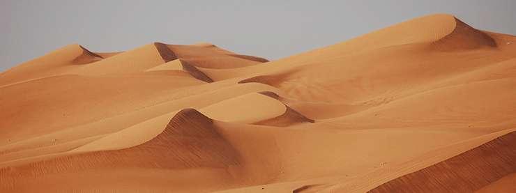 Dubai CELTA Desert
