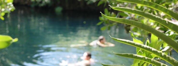 Swimming Oasis Pool Riviera Maya