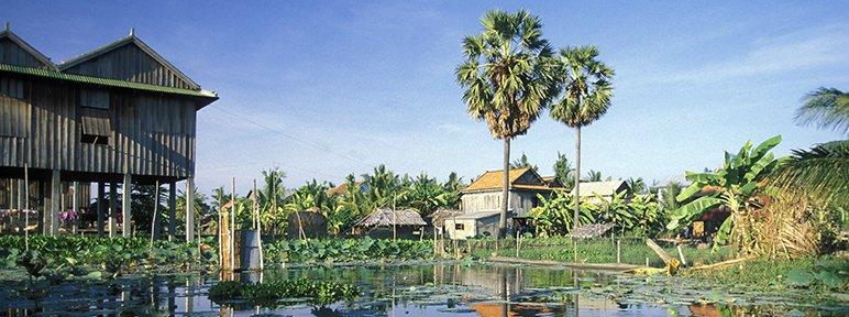 CELTA Course Phnom Penh
