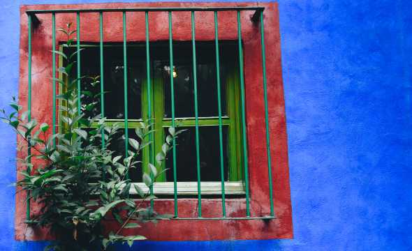 Frida Kahlo musem - top 8 things to do in mexico city